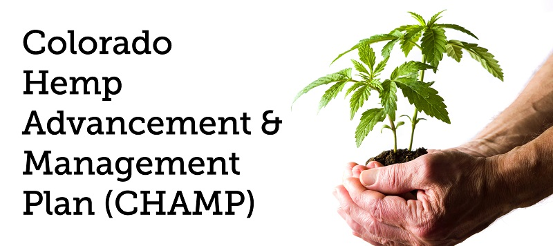 Colorado Hemp Advancement & Management Plan (CHAMP)